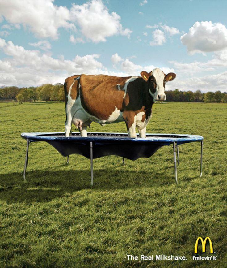 MC Donalds - Der wahre Milchshake
